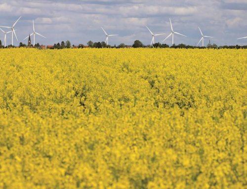 Επανατοποθέτηση και στροφή σε βιώσιμες επενδύσεις στο επιχειρείν